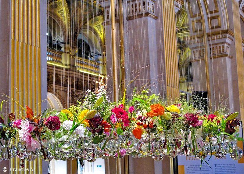 Jardin Du Luxembourg Paris Les Orchidees Du Senat 1 Paris Autrement